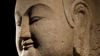 Meditaties met het Centrum voor Mindfulness